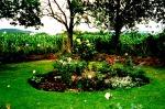 The origins of the cottage garden - we took it apart!