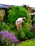 Paul in the Herb Garden