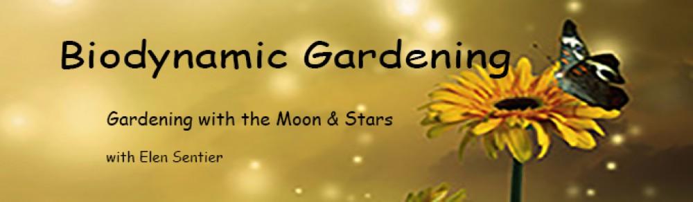 Biodynamic Gardening: Elen Sentier