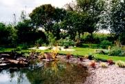 very new pond!